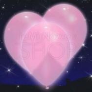 Palloncini a led luminosi rosa 5 pezzi
