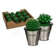 Candele a forma di pianta grassa con vaso in metallo