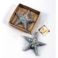 Candela a forma di stella marina con scatolina