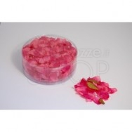 Petali di rosa di colore fucsia