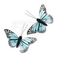 Farfalle decorative azzurro acqua 12 pezzi