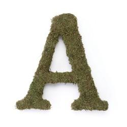 Lettera A in muschio