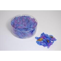 Petali di fiori blu e viola