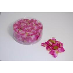 Petali di fiori rosa