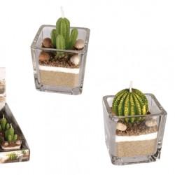 Candela a forma di cactus