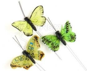 Verde farfalle